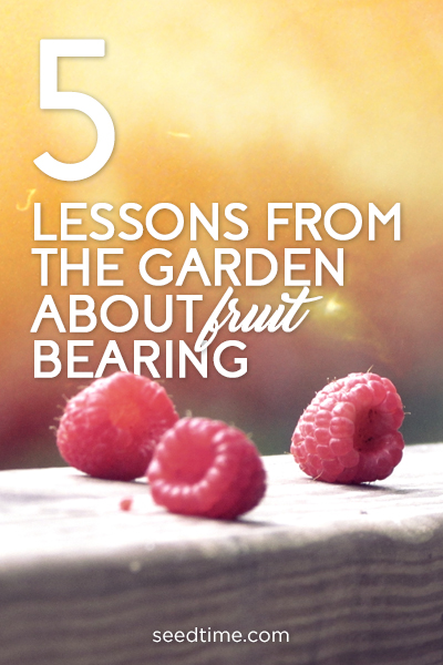 5 lessons from the garden about fruit bearing