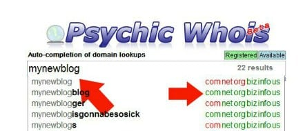 Picking a domain name at psychicwhois