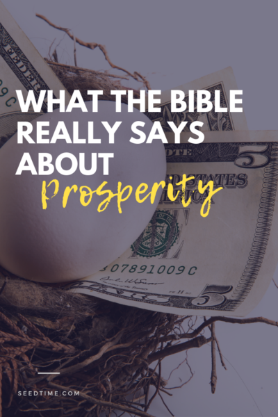 what the Bible really says about prosperity