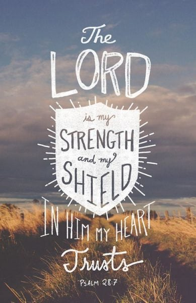 Psalm 28:7 ESV The Lord is my strength and my shield; in him my heart trusts, and I am helped; my heart exults, and with my song I give thanks to him.